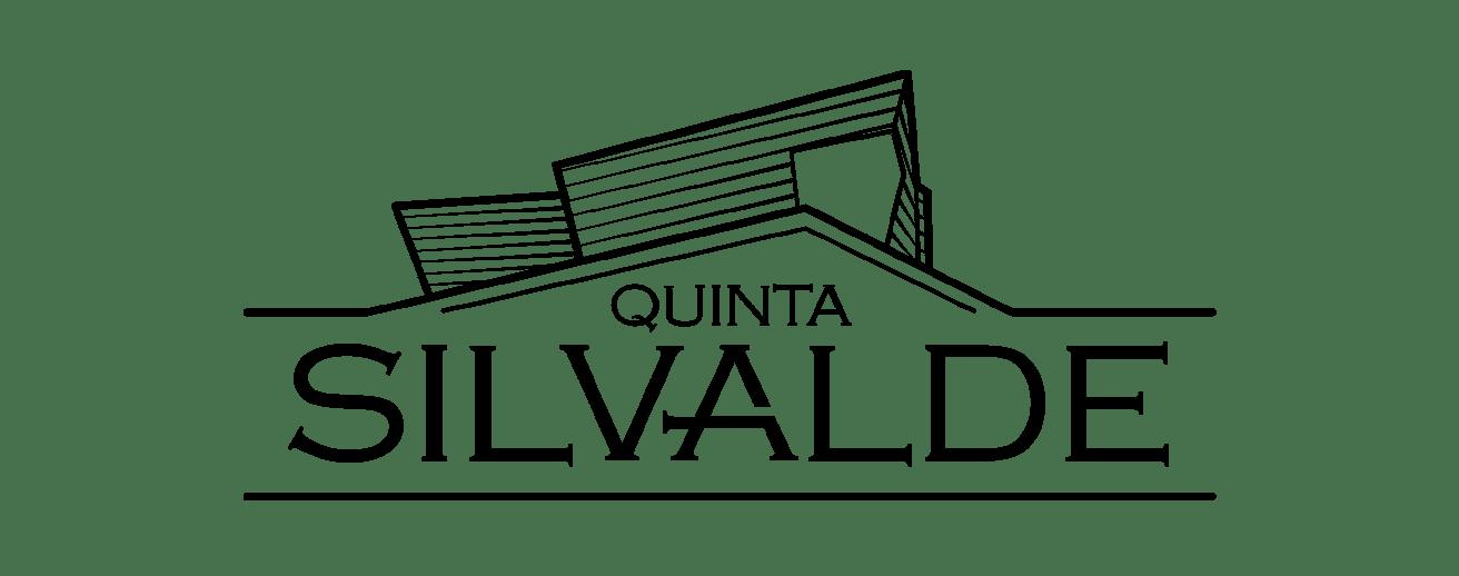 QUINTA-DE-SILVALDE-LOGO-PRETO